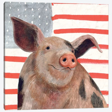 Patriotic Farm IV 3-Piece Canvas #VBO160} by Victoria Borges Canvas Artwork