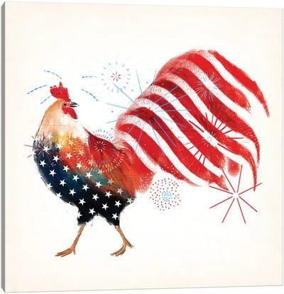 Rooster Fireworks I Canvas Art Print