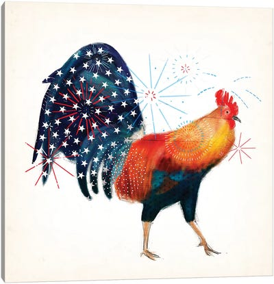 Rooster Fireworks II Canvas Art Print