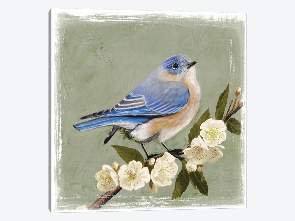Bluebird Branch I by Victoria Borges 1-piece Art Print