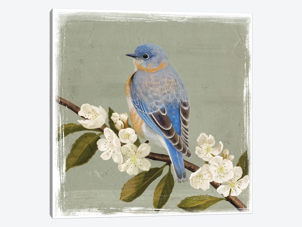 Bluebird Branch II by Victoria Borges 1-piece Canvas Print