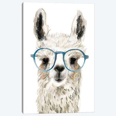 Hip Llama II Canvas Print #VBO222} by Victoria Borges Art Print