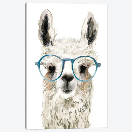 Hip Llama II Canvas Print #VBO222} by Victoria Borges Art Print