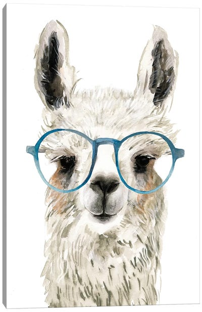 Hip Llama II Canvas Art Print