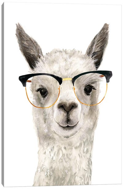 Hip Llama IV Canvas Art Print