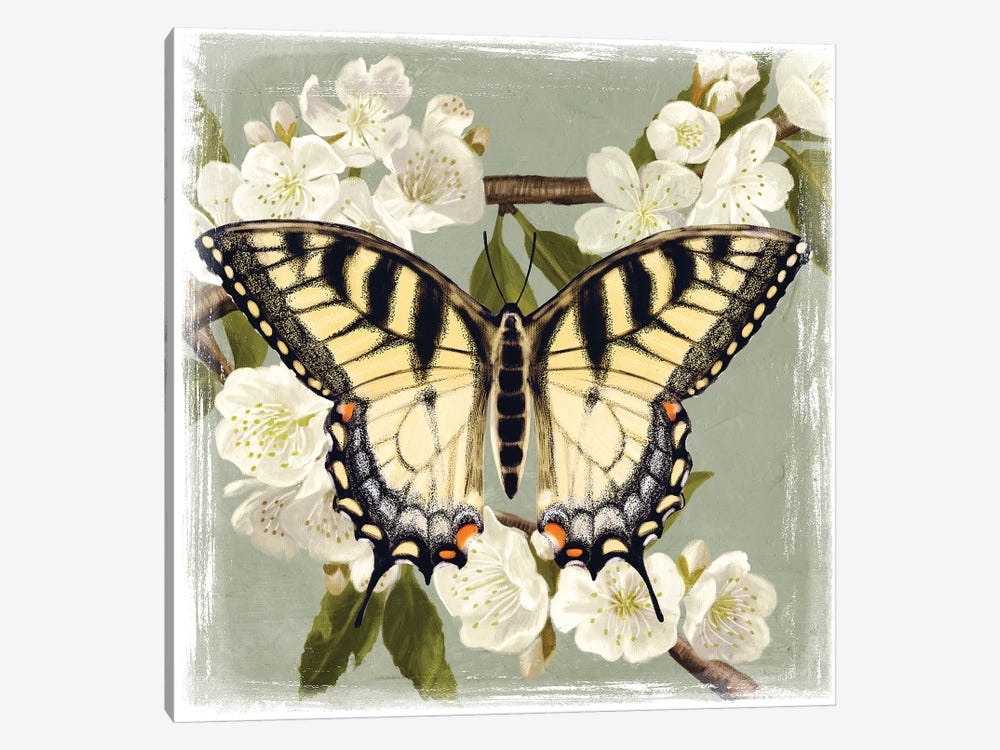 Butterfly Branch II by Victoria Borges 1-piece Art Print
