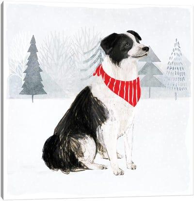 Christmas Cats & Dogs II Canvas Art Print