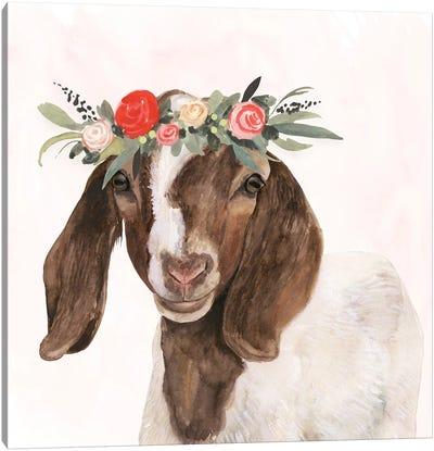 Garden Goat II Canvas Art Print
