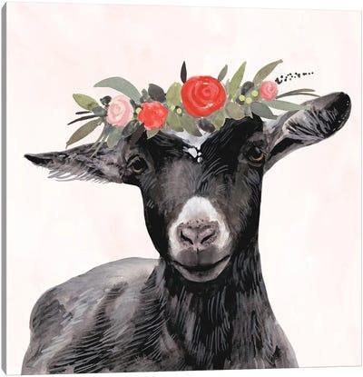 Garden Goat III Canvas Art Print