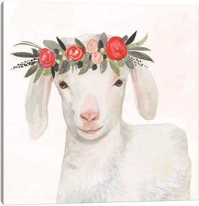 Garden Goat IV Canvas Art Print