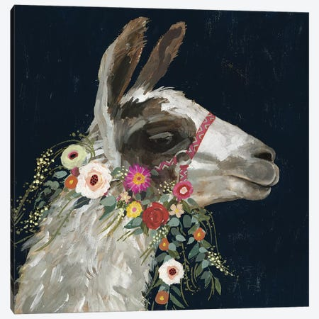 Lovely Llama I Canvas Print #VBO326} by Victoria Borges Canvas Print