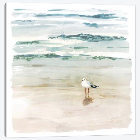 Seagull Cove II Canvas Print #VBO339} by Victoria Borges Art Print