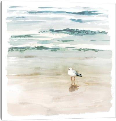 Seagull Cove II Canvas Art Print