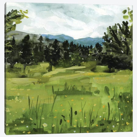 Mountain Moment I Canvas Print #VBO397} by Victoria Borges Canvas Wall Art