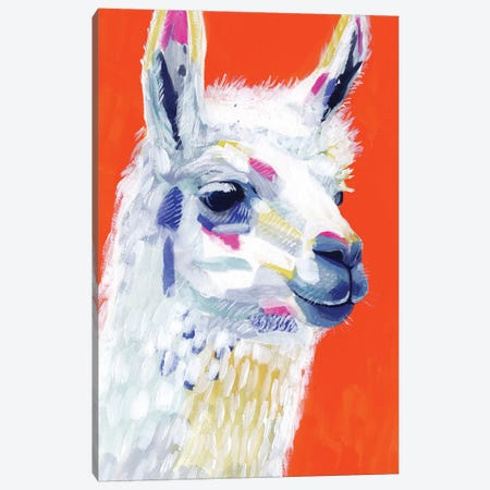 Animal Party IV Canvas Print #VBO474} by Victoria Borges Canvas Print