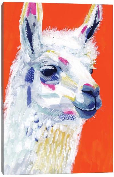 Animal Party IV Canvas Art Print