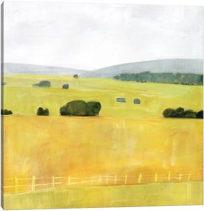 Soft Fieldscape I Canvas Art Print