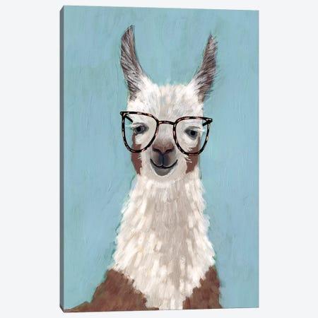 Llama Specs I Canvas Print #VBO49} by Victoria Borges Canvas Print