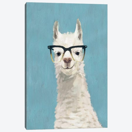 Llama Specs II Canvas Print #VBO50} by Victoria Borges Canvas Artwork