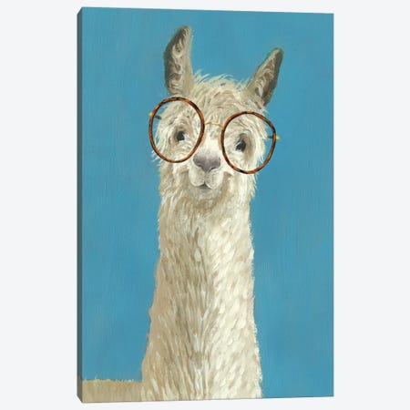 Llama Specs III Canvas Print #VBO51} by Victoria Borges Canvas Wall Art