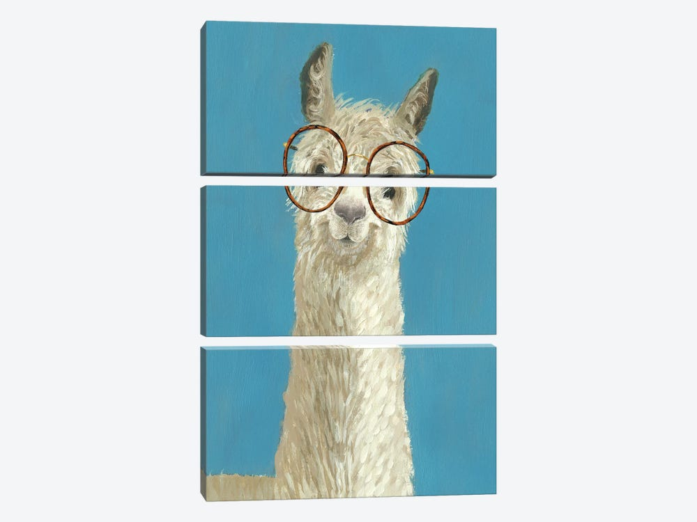 Llama Specs III by Victoria Borges 3-piece Canvas Art Print