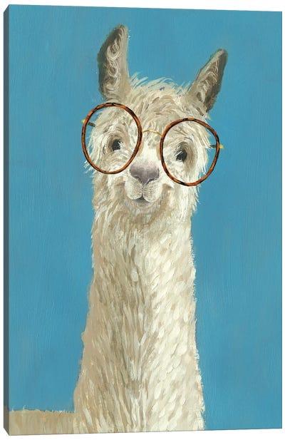Llama Specs III Canvas Art Print