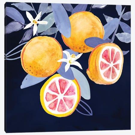 Fresh Fruit III Canvas Print #VBO525} by Victoria Borges Canvas Art Print