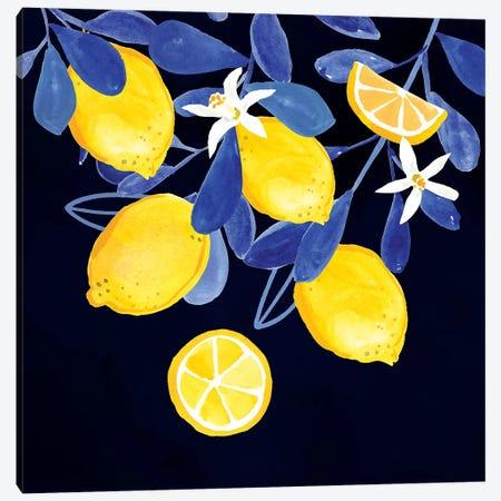 Fresh Fruit V Canvas Print #VBO527} by Victoria Borges Art Print