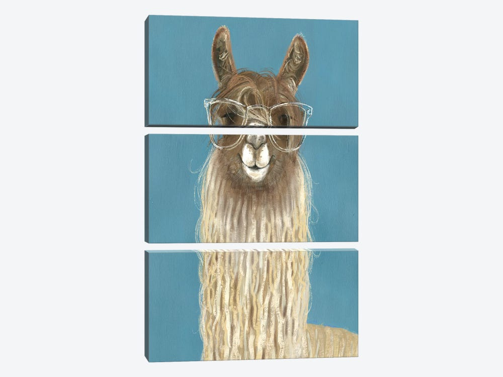 Llama Specs IV by Victoria Borges 3-piece Canvas Wall Art