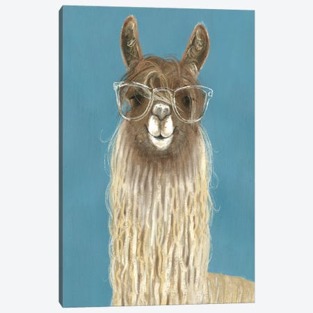 Llama Specs IV Canvas Print #VBO52} by Victoria Borges Canvas Artwork