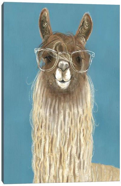 Llama Specs IV Canvas Art Print