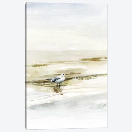 Coastal Gull I Canvas Print #VBO564} by Victoria Borges Art Print
