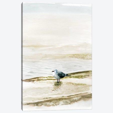 Coastal Gull II Canvas Print #VBO565} by Victoria Borges Canvas Art Print