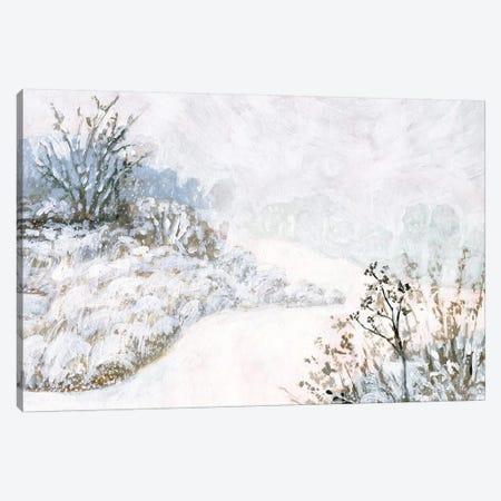 Frozen River Study II Canvas Print #VBO579} by Victoria Borges Canvas Art Print