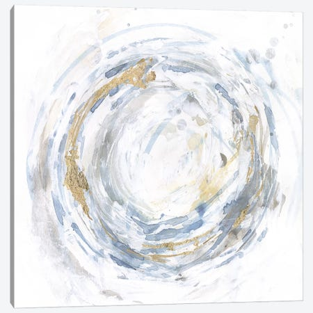 Halcyon Whirl I Canvas Print #VBO584} by Victoria Borges Canvas Print