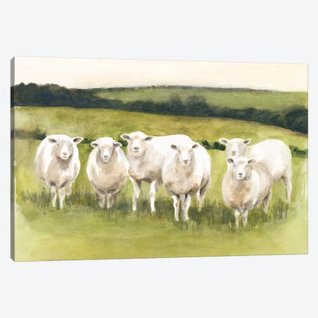 Spring Flock I Canvas Print #VBO616} by Victoria Borges Art Print