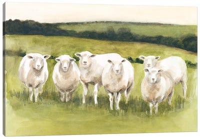 Spring Flock I Canvas Art Print