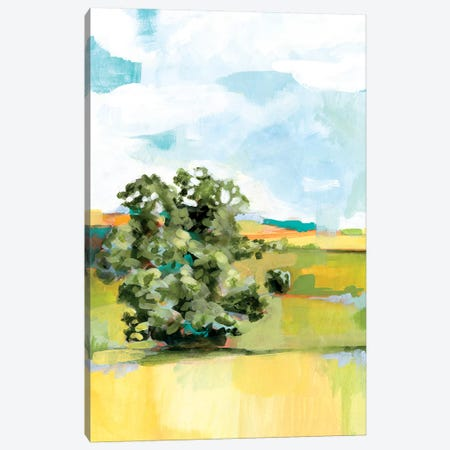 Valley Breeze I Canvas Print #VBO628} by Victoria Borges Canvas Print