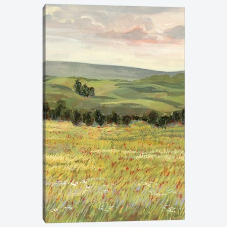 Morning Meadow I Canvas Print #VBO63} by Victoria Borges Canvas Print