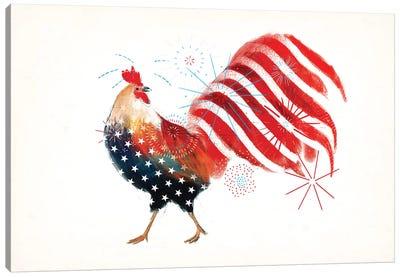 Farm Fireworks Collection A Canvas Art Print