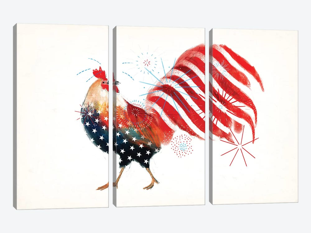 Farm Fireworks Collection A by Victoria Borges 3-piece Canvas Wall Art