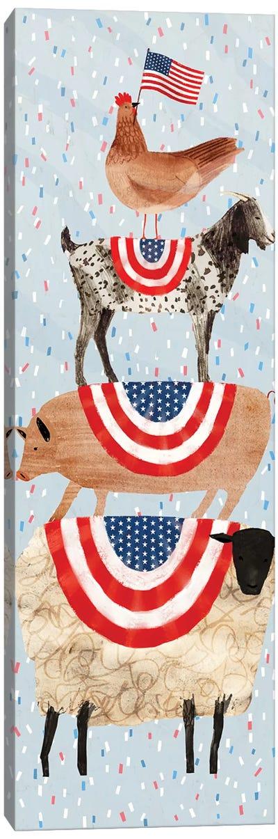 Farm Fireworks Collection B Canvas Art Print