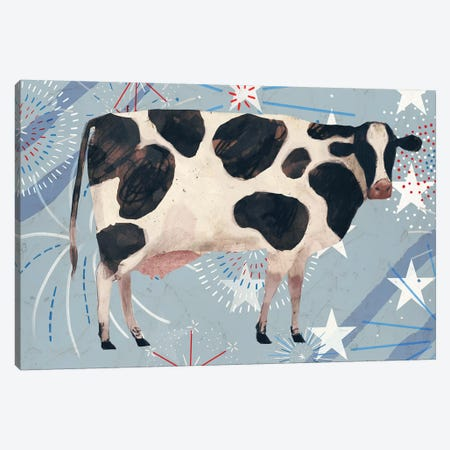 Farm Fireworks Collection D 3-Piece Canvas #VBO683} by Victoria Borges Art Print