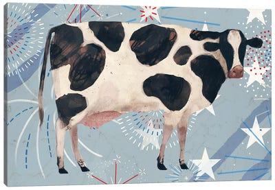Farm Fireworks Collection D Canvas Art Print