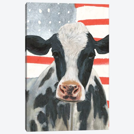 Patriotic Farm Collection B 3-Piece Canvas #VBO709} by Victoria Borges Canvas Artwork