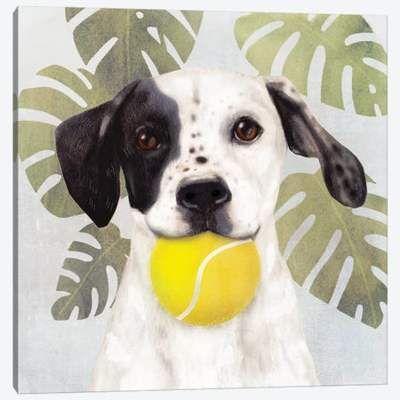 Pet Life IV Canvas Print #VBO788} by Victoria Borges Canvas Artwork