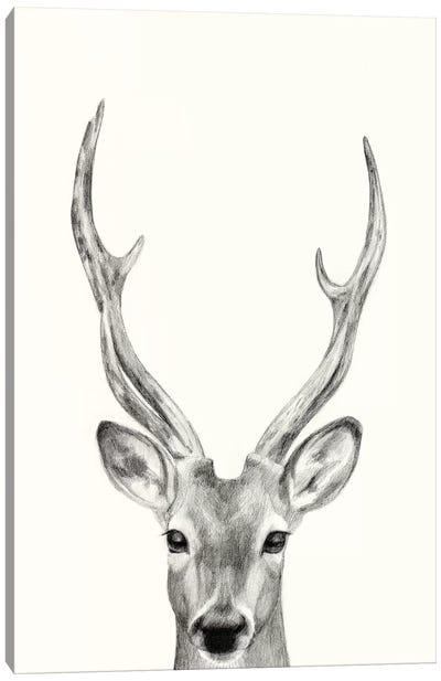 Animal Mug IV Canvas Art Print