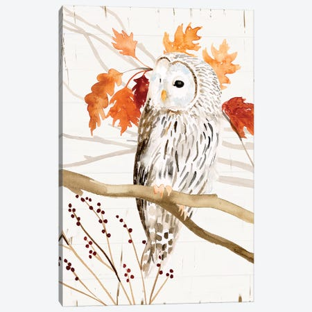 Harvest Owl II Canvas Print #VBO830} by Victoria Borges Canvas Art