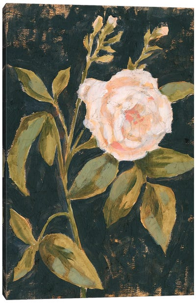 Moody Blooms I Canvas Art Print