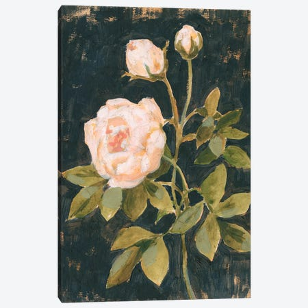 Moody Blooms II 3-Piece Canvas #VBO909} by Victoria Borges Canvas Art